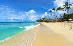 Tropical beach in Dominican Republic. Royalty Free Stock Photo