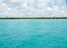 Tropical beach in Dominican republic. Caribbean sea. Royalty Free Stock Photos