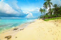 Tropical beach in Dominican Republic. Royalty Free Stock Photography
