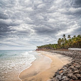 Tropical beach with dramatic sky. Tropical beach and coconut palm trees near the blue ocean at overcast dramatic sky in Varkala, Kerala, India Royalty Free Stock Image