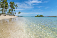 Tropical beach with emerald water and coconut trees Stock Photo