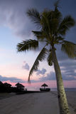 Tropical Beach Evening Royalty Free Stock Photos