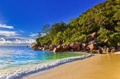 Tropical beach at evening Royalty Free Stock Photo