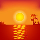 Tropical beach in the evening. Royalty Free Stock Images