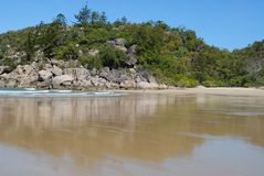 Tropical beach, far North Queensland royalty free stock image