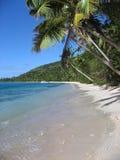 Tropical beach of fijian island, vertical. Composition Stock Photos