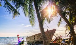 Tropical beach with fishing boats. Tropical beach with coconut trees and fishing boats Royalty Free Stock Image