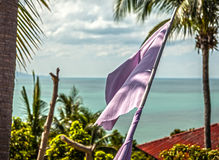 Tropical beach with flag. Stock Photography