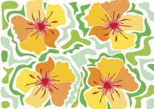 Tropical beach flower - yellow Royalty Free Stock Photography