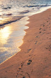 Tropical beach with footprints. Tropical sandy beach with footprints at sunrise Royalty Free Stock Photo