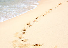 Tropical beach with footprints Royalty Free Stock Images