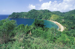 Tropical beach and forest, Tobago. Englishman's Bay, Tobago, West Indies Stock Photo