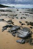 Tropical Beach - Fraser Island Royalty Free Stock Photos