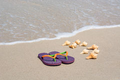 Tropical beach getaway. Flip flops and conch shells on smooth sand and soft wave background Stock Images