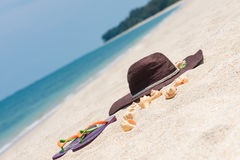 Tropical beach getaway. Straw hat and conch shells on sandy beach Stock Image