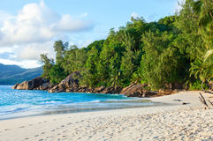 Tropical beach with granite boulders and palm trees. Mahe, Seychelles Stock Photo