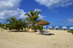 Tropical beach in Grenada, Caribbean Stock Image