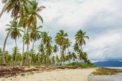 Tropical beach and grey sky stock image