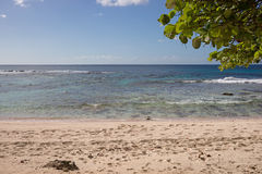 Tropical beach of Guadeloupe Royalty Free Stock Photo