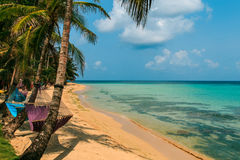 Tropical beach with hammock on palm Stock Photo