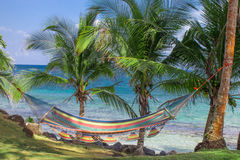 Tropical beach with hammock on palm Stock Image