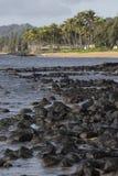 Tropical beach on Hawaii, USA. Stock Photo