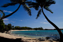Tropical beach (Hawaii/USA) Royalty Free Stock Photo