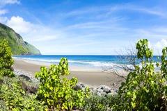 Tropical beach in hawaii Royalty Free Stock Photos