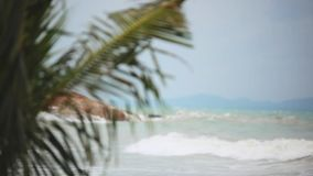 Tropical beach with heavy waving palm trees in a storm in front of a raving sea and changes focus from blurred. Tropical beach with heavy waving palm trees in a stock video