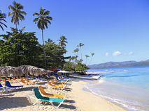 Tropical beach with high palm trees and white sand Stock Images