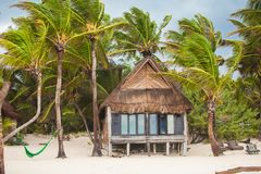Tropical beach house on ocean shore among palm Royalty Free Stock Images