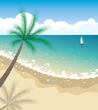 Vector tropical beach Stock Images