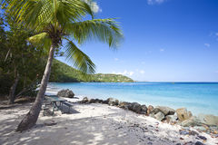 Tropical Beach In The Caribbean Stock Photography