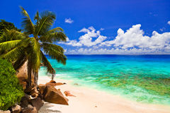 Tropical beach at island La Digue, Seychelles. Vacation background Royalty Free Stock Photography