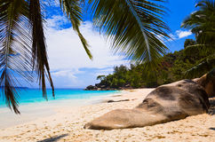 Tropical beach at island Praslin, Seychelles Royalty Free Stock Image