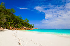Tropical beach at island Praslin, Seychelles. Vacation background Royalty Free Stock Photography
