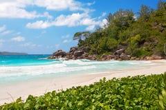 Beach anse georgette Stock Photo
