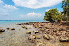 Tropical beach on the island  in Thailand Royalty Free Stock Images