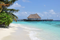 Tropical Beach. With jetty in Maldives Royalty Free Stock Image