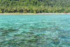 Tropical beach with jungle, Andaman Sea Stock Image