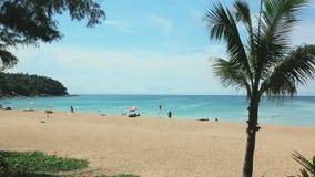 Tropical beach Karon. Tropical beach with coconut palm tree and blue sky in Karon beach Phuket, Thailand stock footage