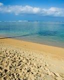 Tropical beach in Kauai, Hawaii. A shot of the shade of a palm tree at the Anini beach, Kauai Royalty Free Stock Photography