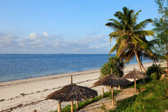 Tropical beach in Kenya Royalty Free Stock Photo