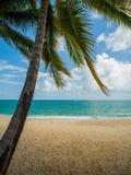 Tropical beach of Koh Samui island Stock Images