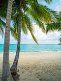 Tropical beach of Koh Samui island Royalty Free Stock Photos