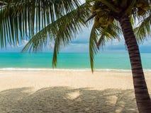 Tropical beach of Koh Samui island Stock Photography
