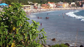 Tropical beach lagoon in India stock video