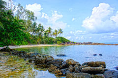 Tropical beach. Royalty Free Stock Images