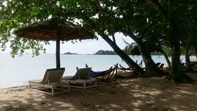 Tropical beach with lazy chairs under trees royalty free stock images