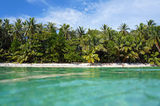Tropical beach with lush vegetation Royalty Free Stock Photo